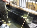 pond cleaning Fetcham