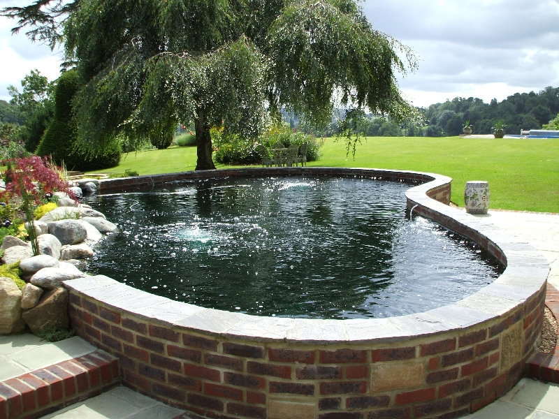 Ponds on pinterest raised pond ponds and koi ponds for Koi pond pool
