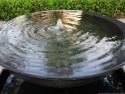 Water bowl (5)